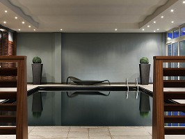 Pullman Toulouse Airport - Piscina