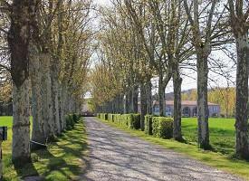 Domaine de Balestat - Esterno