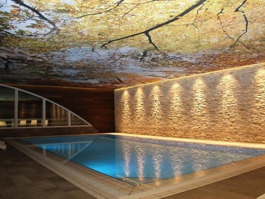 El borde del bosque - piscina cubierta