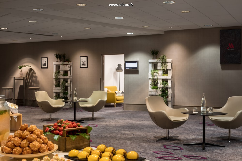 Paris marriott rive gauche hotel  conference center - studio