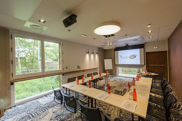 Parc asterix conventions and seminars - meeting room 57 m²