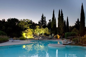 Villa Vicha - Swimming pool