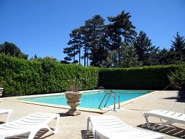La casa colonica della piscina a forma di albero del ponte di ulivo