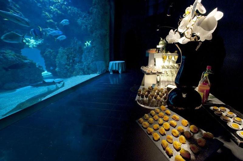 Museo Oceanográfico de Mónaco en el acuario