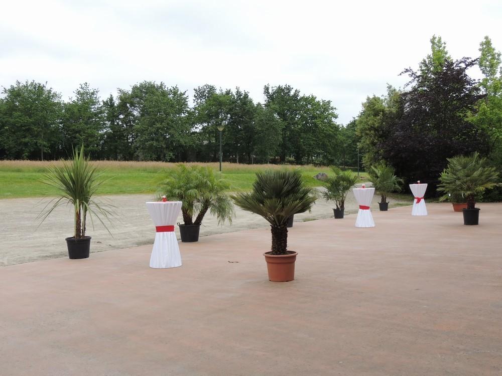Convention Center la fleuriaye - terrazza decorata