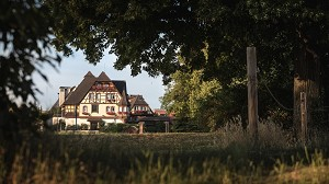Der Obernai Hotel Park - Obernai Seminar