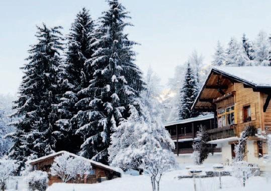 Club Belambra - l'albero di servizio - in inverno