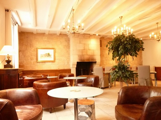 The great monarch of azay-le-rideau - lounge