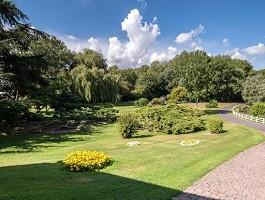 Campo di Chanterelle - Garden