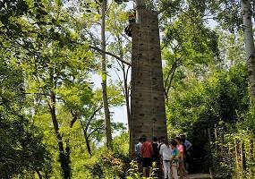Natura Park Adventure Game - seminar Castelmaurou