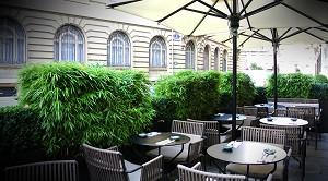 Zo Restaurante - Terraza