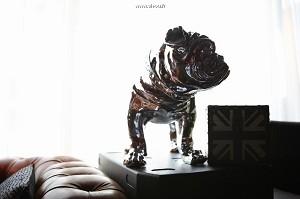 Penta dog_5002