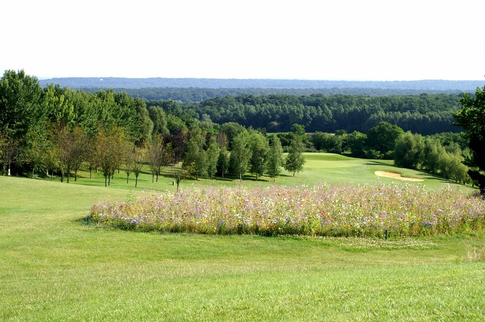 Hotel de golf de mont griffon - alrededores