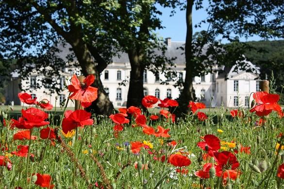 Honig der Abtei Éine Seine Tourismus 5_0011