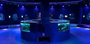 Pariser Aquarium - Das Medusarium