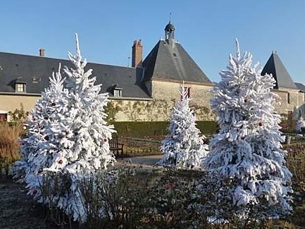 Château de Cheverny - Inverno