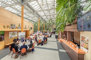 Terra Botanica Business Center - El salón verde