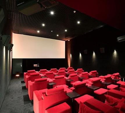 El Palacio de Tokio Yoyo - Cine 1