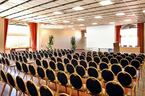 Salon Alsace - Hotel Lyon Metropole