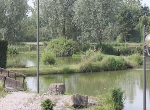 Campo de cascadas - jardín