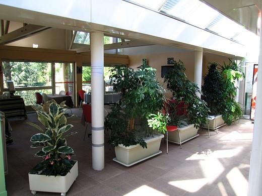 Hotel auf der Insel saussay - Lobby