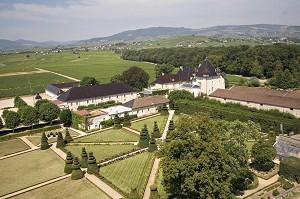 Chateau de Pizay - Umgebung