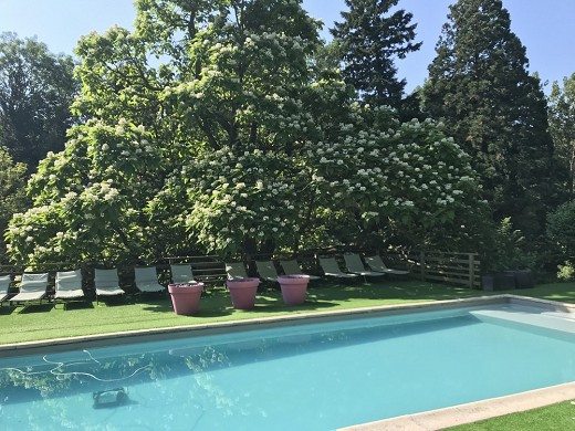 Domaine la gentilhommiere - outdoor swimming pool open from June 15 to September 15