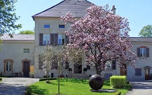 Sala de seminarios: La Brunerie & ses Instants -