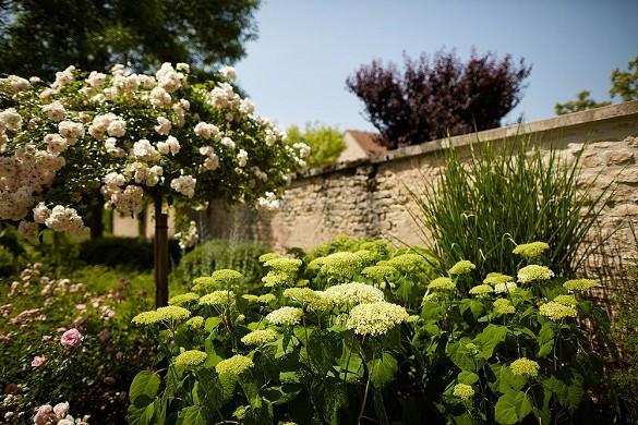 The montrachet - garden