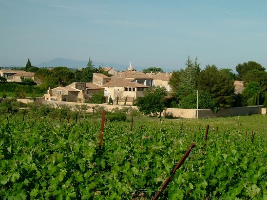Domaine des escaunes - an overview of the estate