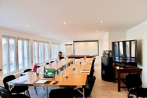 Hotel Sturgeon Poissy - Seminar room