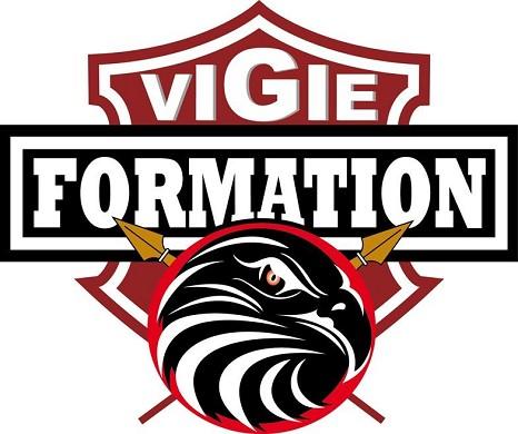 Logo vf_e 02