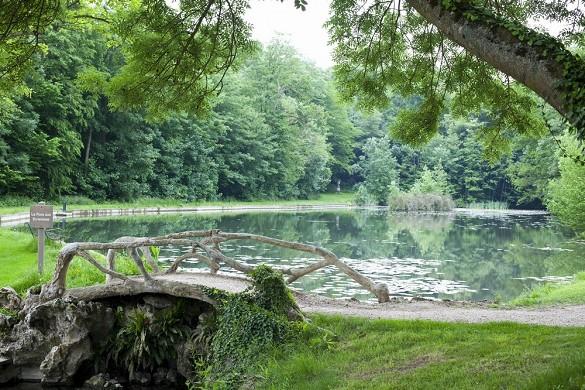 Gli stagni di Saint-Aubin - lo stagno