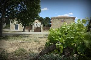 Mas de Laux - Seminario presso l'Hérault