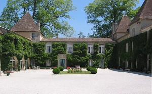 Château Carbonnieux - Event castle