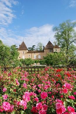 Castillo de Carbonnieux - medio ambiente