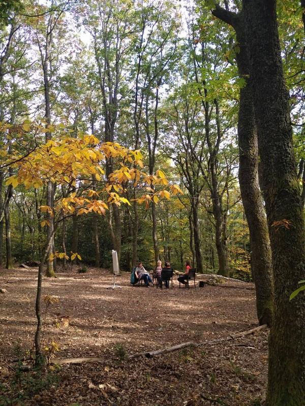 Parque y claro - Domaine du Hirtz
