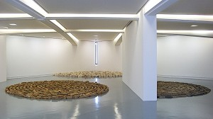 Room rental in a museum