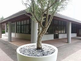 Domaine du Longchamps - Seminar location near Montauban