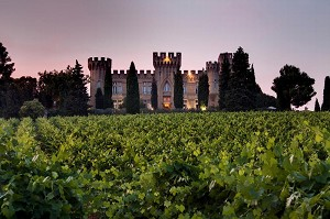 Château Fines Roches - Vaucluse seminario castello