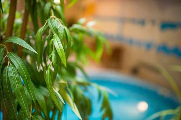 Hotel Acanthus Leaves - Piscina