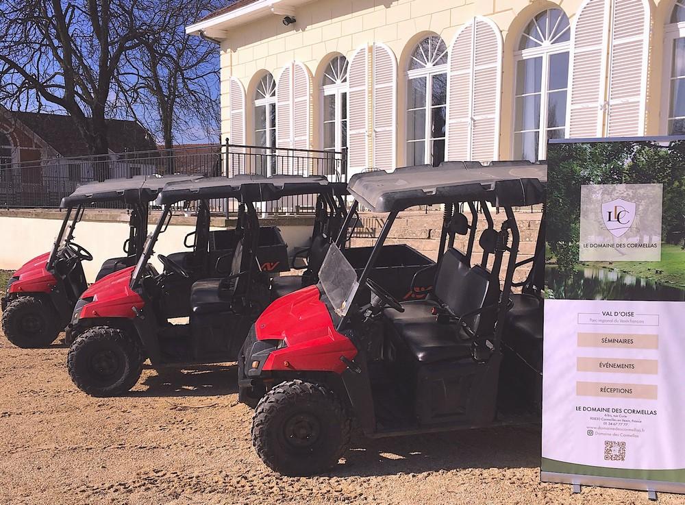Das Feld der Kormellen - Business Event - Buggy-Kurs in Französisch Vexin