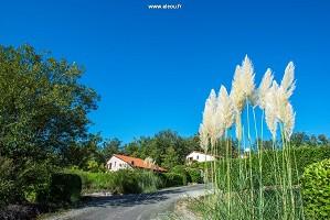 Villen in einer ruhigen und natürlichen Umgebung