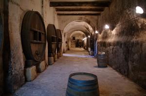 Castillo de clary bodega de vinos