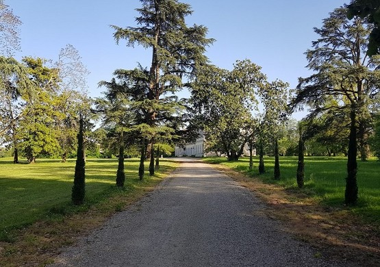 Château saint-denis - callejón