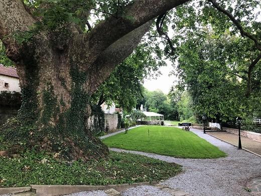 Le logis de mauzay - Garten