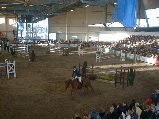 The chorus - horse riding