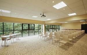 Le Grand Hotel Domaine de Divonne - Sala de seminarios