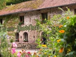 Château Landsberg - Fachada