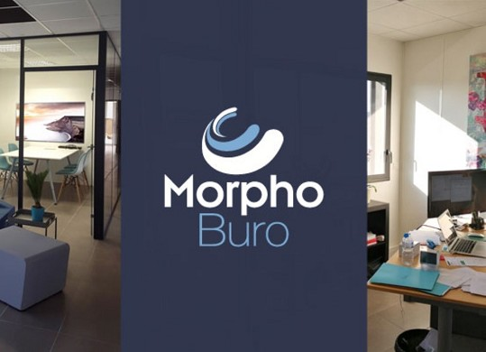 Morphoburo - interni